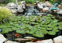 perfect pond supplies
