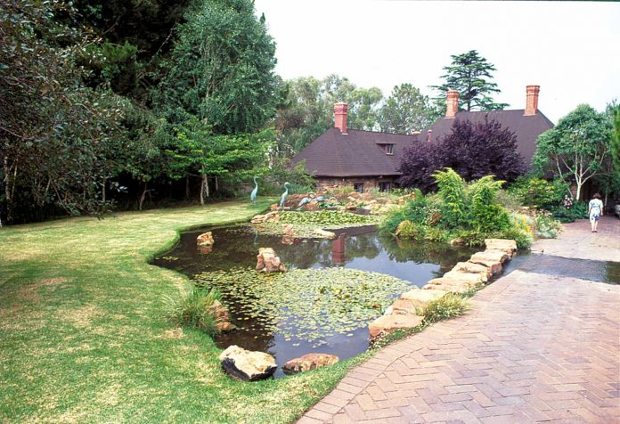 pond to suit garden type
