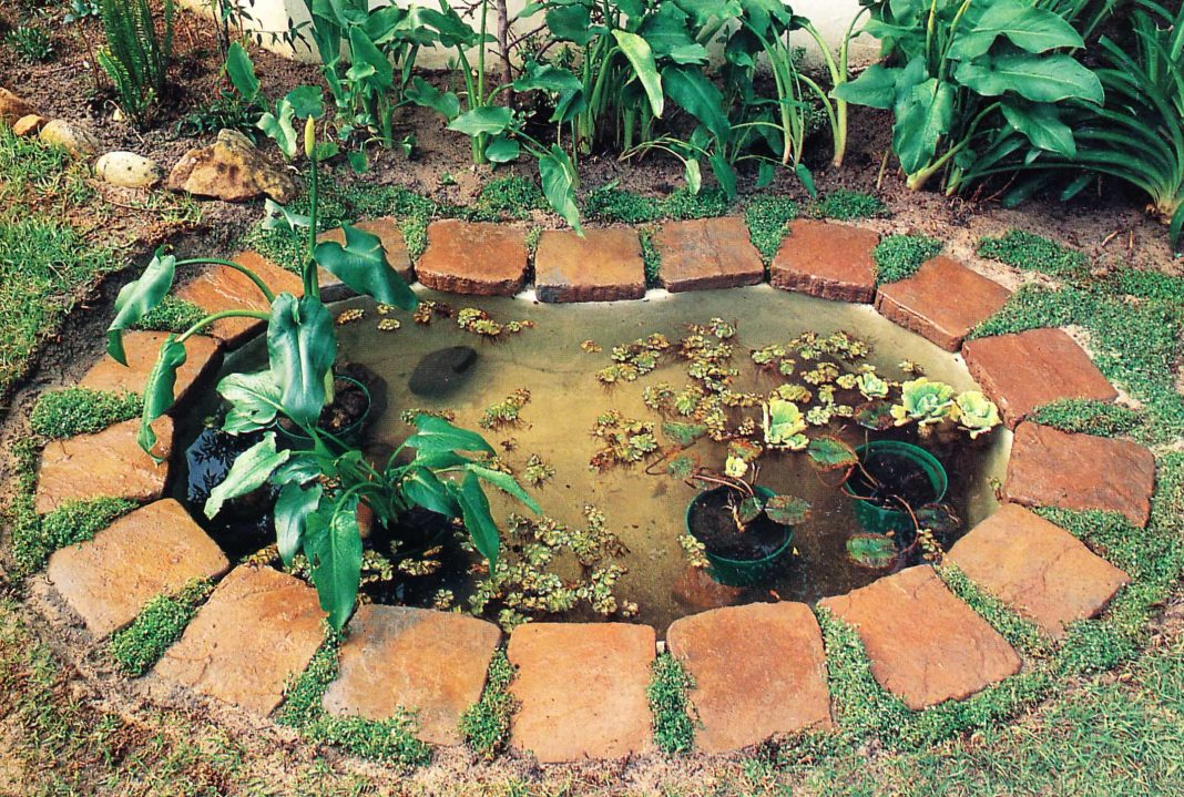 This is how to install a preformed pond