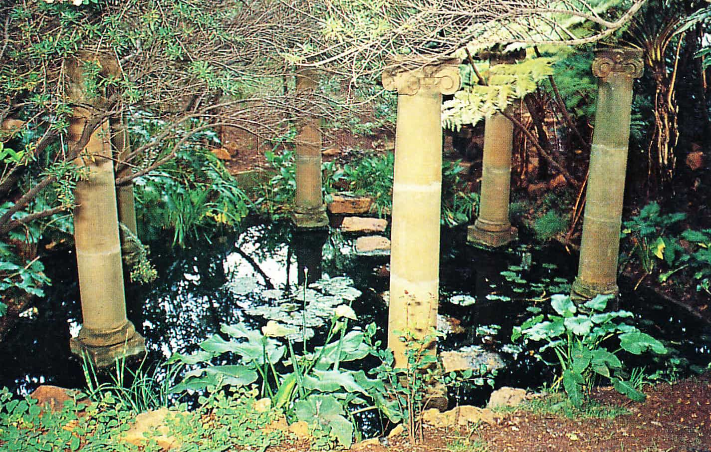 03 Stepping stones - Backyard Ponds & Pools