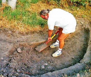 05 duckpond dig out 300x254 - How to Build a Small Duck Pond