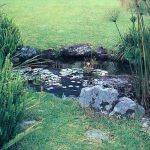 Calculate pond cost 150x150 - Step-by-Step