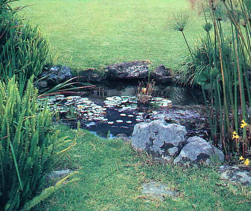 You can create this natural looking pond